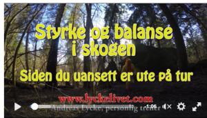 Skjermbilde 2016-04-23 18.45.35